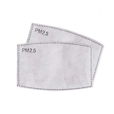 Filtre PM2.5 5 couches charbon actif pour masque à valve
